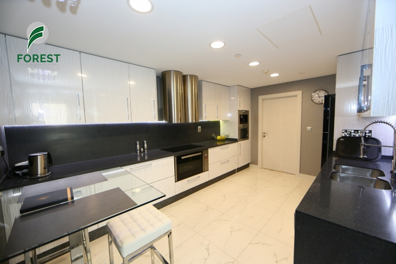 Fully Upgraded |Spacious |Vacant| Fully Furnished
