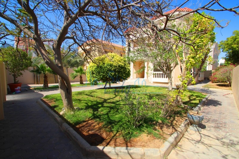 BEAUTIFUL LARGE 3 BED W/AMAZING GARDEN UMM SUQEIM 1