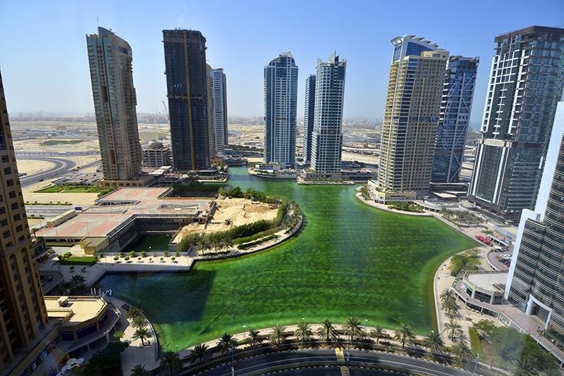 Studio Apartment For Rent in  Lake View Tower,  Jumeirah Lake Towers | 11