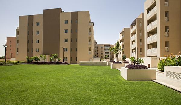 1 Bedroom Apartment For Rent in  Manara,  Dubai Waterfront   5