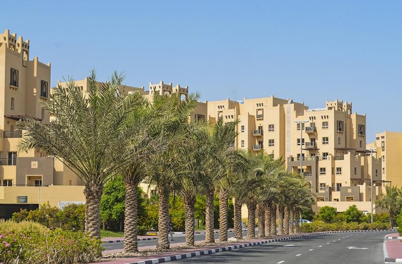 1 Bedroom Apartment For Rent in  Al Thamam 18,  Remraam   12