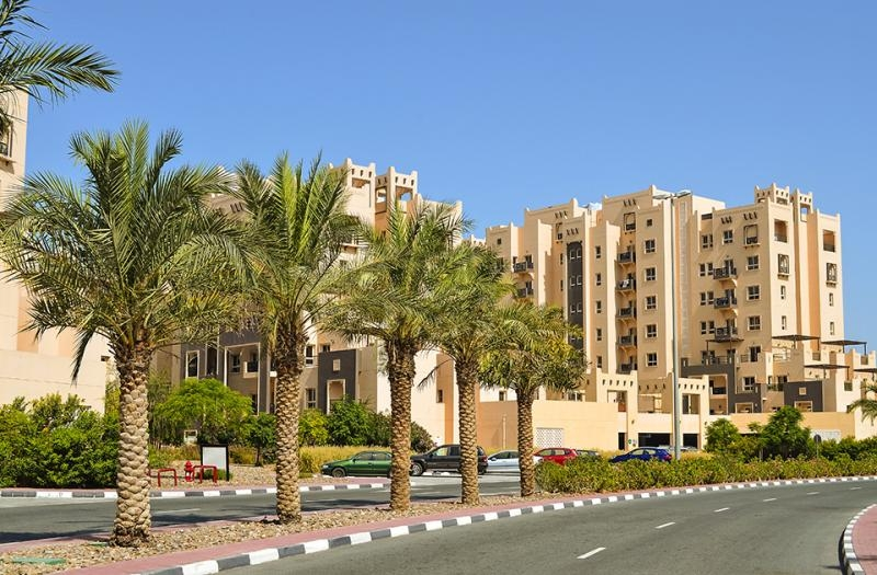 1 Bedroom Apartment For Rent in  Al Thamam 18,  Remraam   14