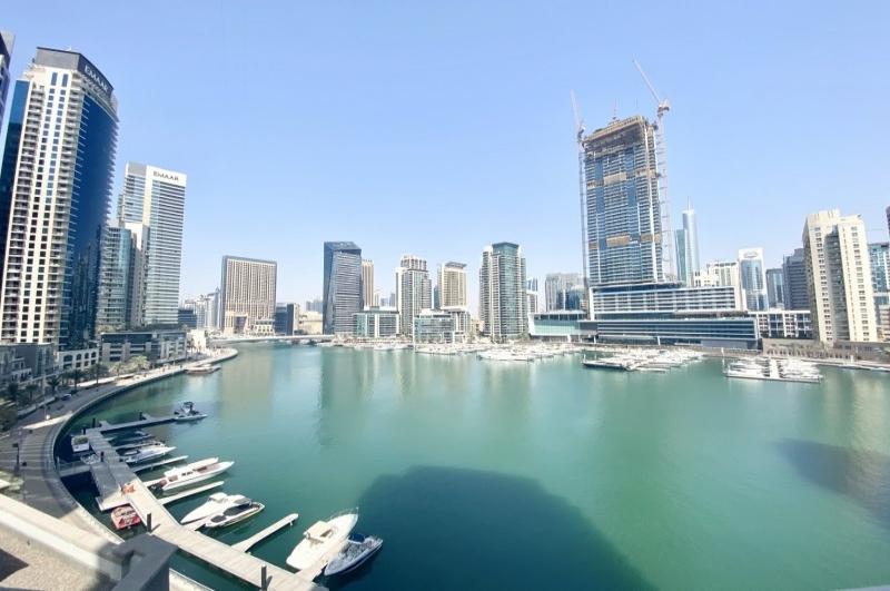 Delphine, Dubai Marina