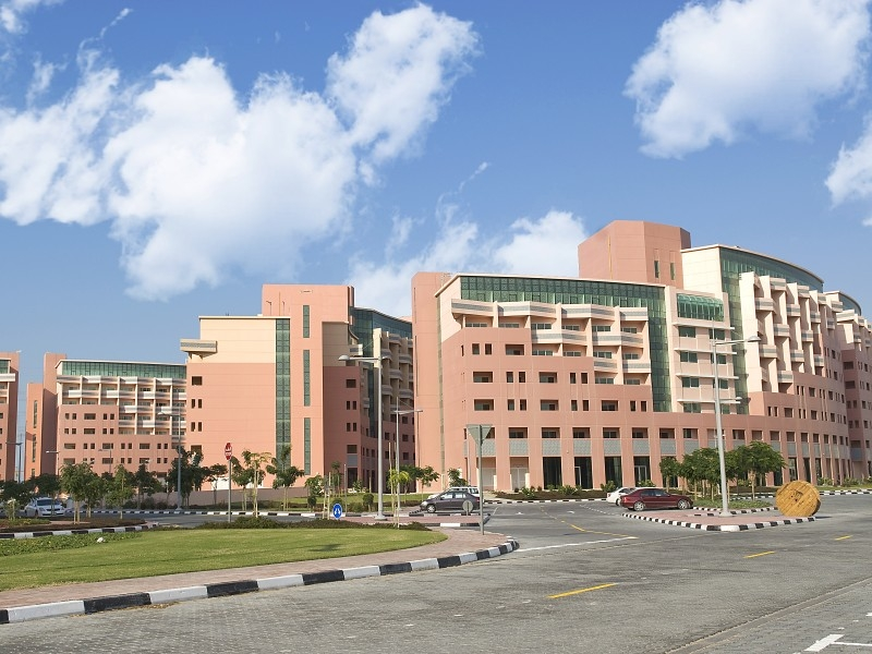 1 Bedroom Apartment For Rent in  Building 1 To Building 37,  Discovery Gardens | 6