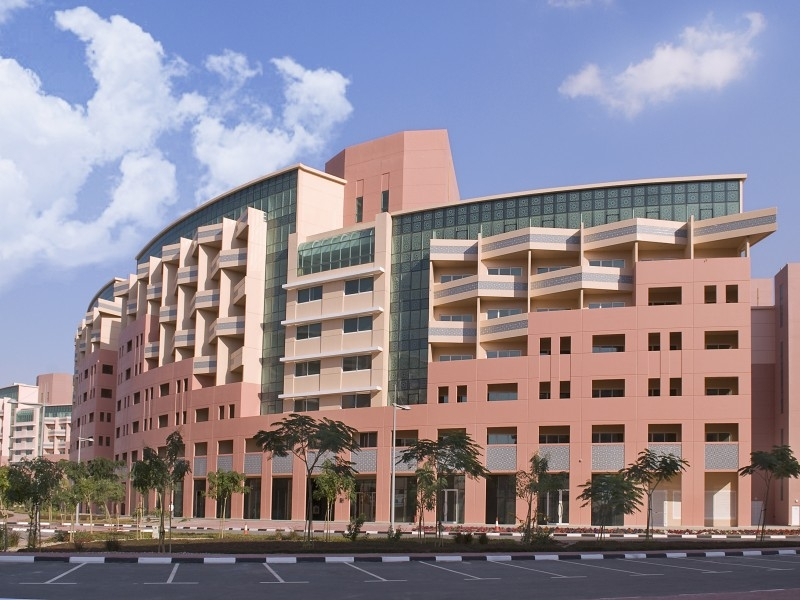 1 Bedroom Apartment For Rent in  Building 1 To Building 37,  Discovery Gardens | 5