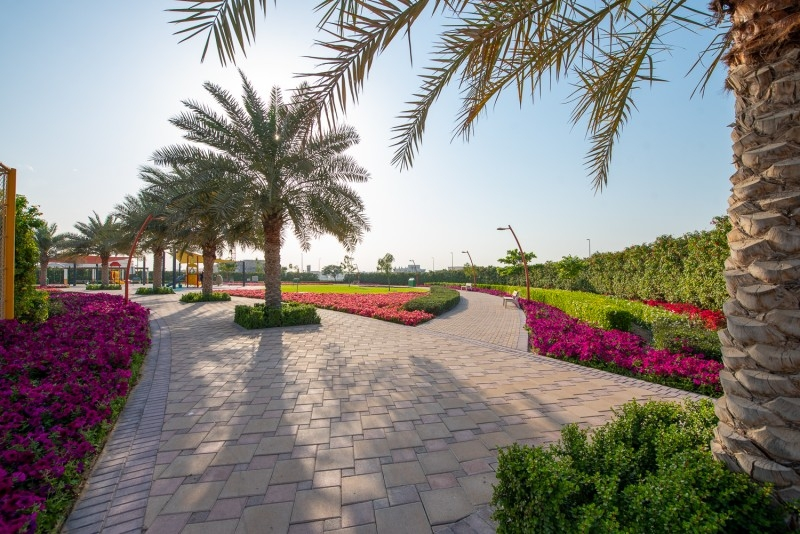 Studio Residential Plot For Sale in  Umm Al Sheif Villas,  Umm Suqeim   5