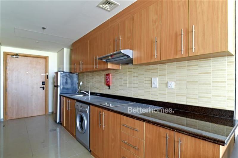 Studio Apartment For Sale in  Lincoln Park B,  Arjan | 9