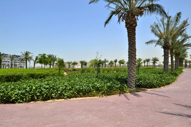 Studio Apartment For Rent in  Bloom Towers,  Jumeirah Village Circle | 15
