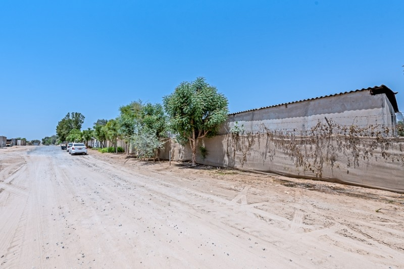 Studio Residential Plot For Sale in  Wadi Al Amardi,  Wadi Al Amardi   1