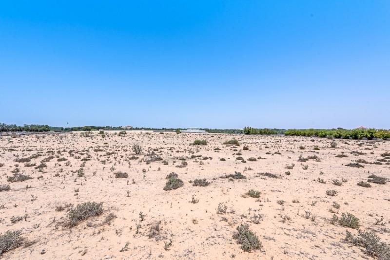 Wadi Al Amardi, Wadi Al Amardi