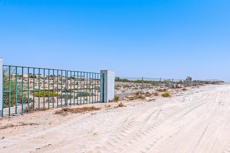 Studio Residential Plot For Sale in  Wadi Al Amardi,  Wadi Al Amardi   6
