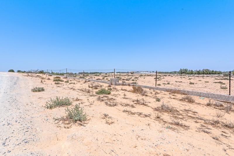 Studio Residential Plot For Sale in  Wadi Al Amardi,  Wadi Al Amardi   10