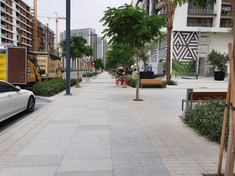 1 Bedroom Apartment For Rent in  Acacia,  Dubai Hills Estate   9