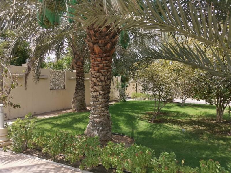 3 Bedroom Villa For Rent in  Nadd Al Hammar Villas,  Nadd Al Hamar   4
